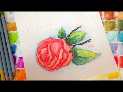 Vintage rose watercolor pencil tutorial