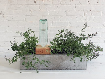 How to make a concrete planter that waters itself