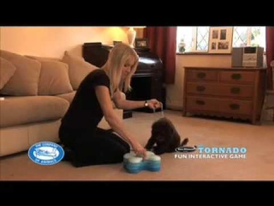 Nina Ottosson Dog Tornado Dog Interactive Game