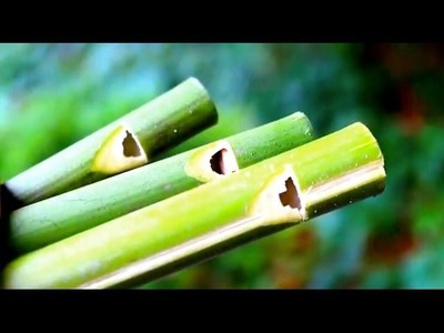 How to make a Flute or Swanee Slide Whistle out of Bamboo - Sensory Learning 4 Life