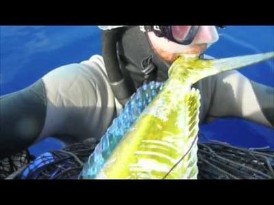 Plastic Bottle Boat JUNK