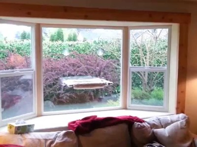 Finish Cedar Trim on Inside of How to Install a Bay Window Series with Jim