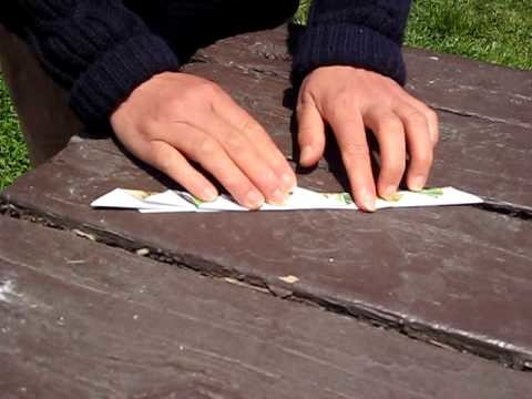 How To Fold a Paper Leaf