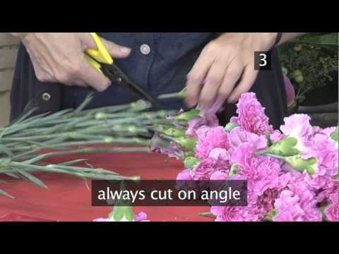 How To Make A Ball Of Flowers With An Oasis