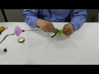 How to Make Carnation Flower
