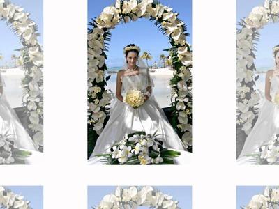 Wedding Arch Reception Decoration - Wedding-Cheap-Ideas.com