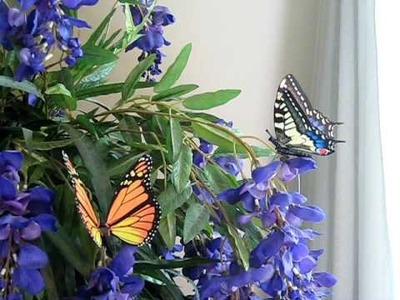 Www.tcswoodentoys.com Moving Butterfly Lifelike Motion Animated Monarch Home Decor