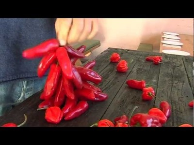 How to dry and string chillies