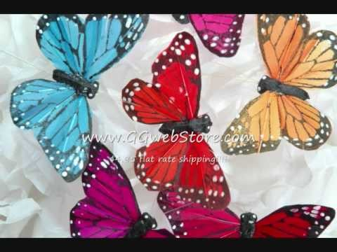 Butterfly World: Butterflies For All Occasions