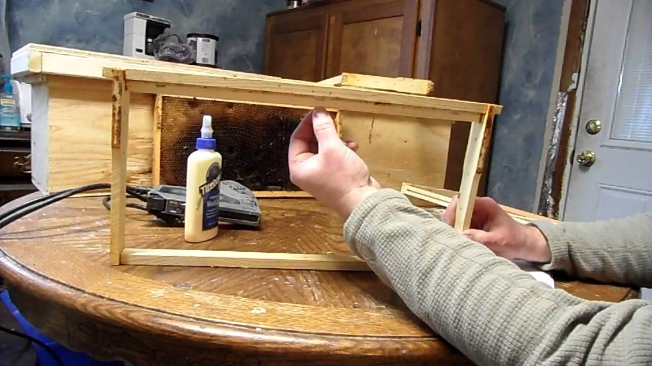 How to make and use Foundationless frames in a beehive video
