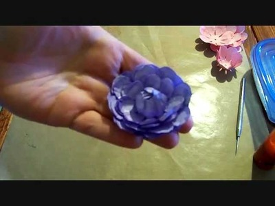 Flower Friday Episode 2- The Peony.wmv
