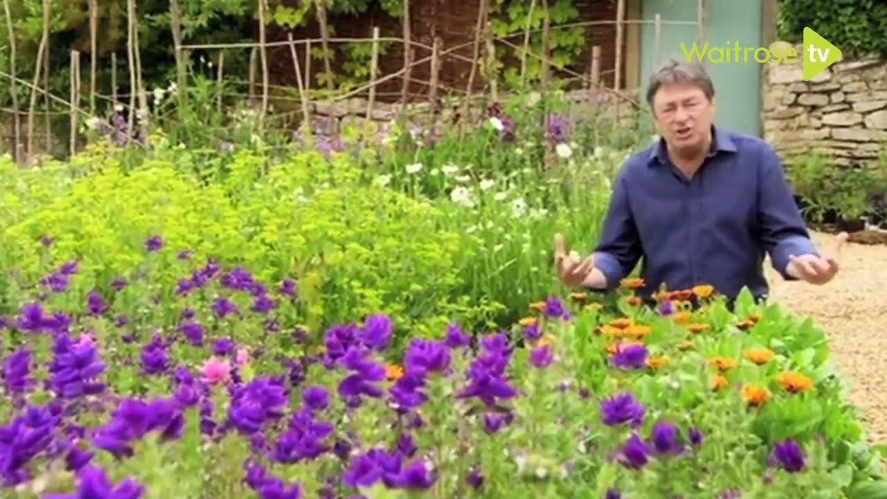 How to create a cottage garden - Waitrose Garden