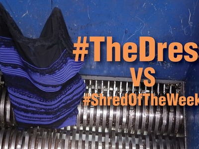 SSI's Shred of the Week: The Dress