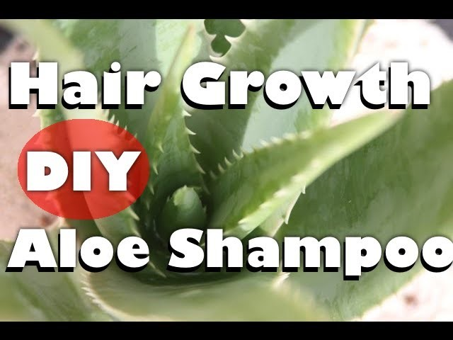 How to Make NATURAL homemade Aloe Vera Shampoo (to Grow hair & Treat hair loss) - Part 1 of 3