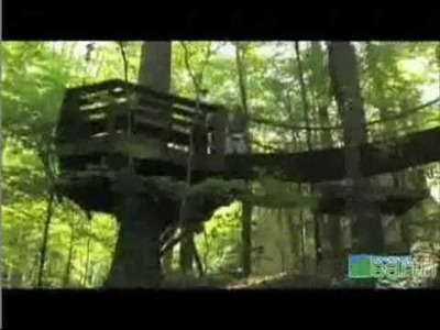 TreeHouse - Best way of Living