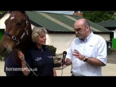 Advice on when you should worm your horse.