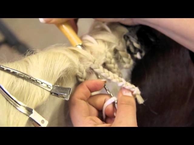 How to Braid a Horse's Mane - brought to you by Greenhawk
