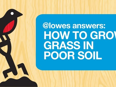 How To Grow Grass In Poor Soil