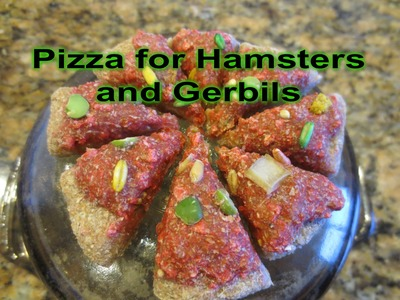 How to make a pizza for hamsters and gerbils