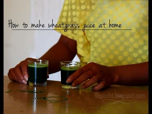 How to make wheatgrass juice at home