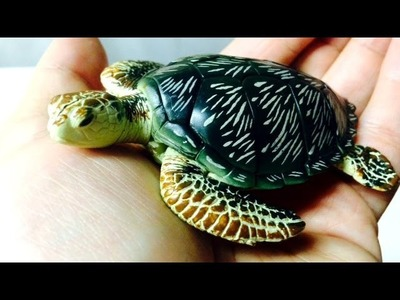 Green Turtle 3D Puzzle ~ Incredible Science