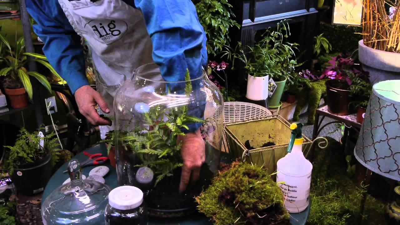 How to Make a Fern Moss Terrarium : Terrariums & More