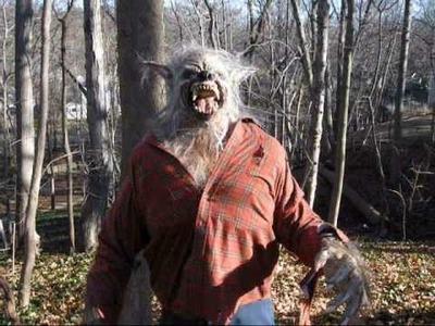 Werewolf Costume -The Big Bad Wolf Werewolf. Wolfman Theme Park Movie Quality Halloween Costume.