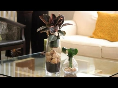 How to Decorate Using Seashells : Decorations for the House