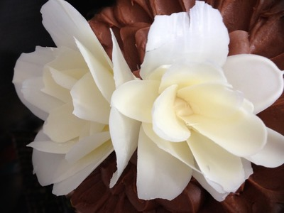 How to make a CHOCOLATE FLOWER rose by Ann Reardon How To Cook That Chocolate