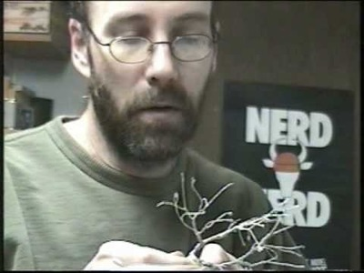 Part 7 of Making trees - wire twist trees - trunk options