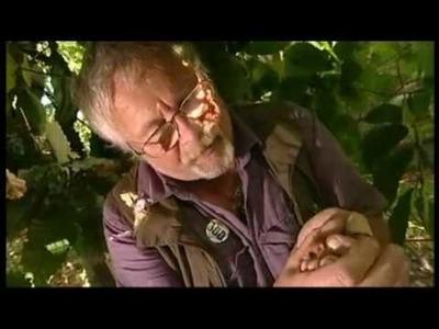 Bill Oddie names Wildwood's dormice as his number one favourite animal
