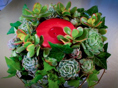 How to Make a Succulent Wreath Floristry Tutorial