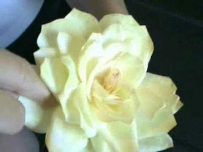 Watercolor Coffee Filter Paper Roses (slowed down)
