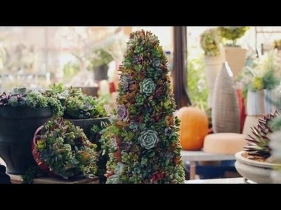 How to Create Succulent Objects And Christmas Trees