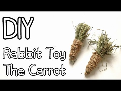 How To Make Homemade Rabbit Toy The Carrot DIY