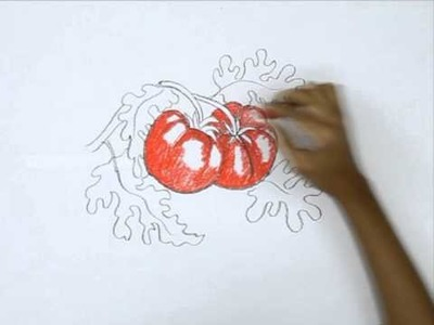 How to Draw a Tomatos