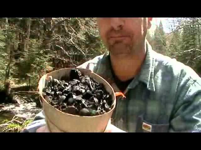 HOW TO MAKE A BIRCHBARK WATER PURYFIER !