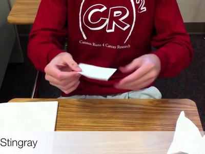 How to Make A Fast Paper Airplane - The Stingray