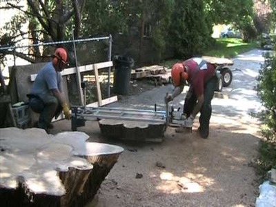 Cutting a 200 year old oak tree into slabs with a 6 foot chainsaw sawmill