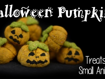 HALLOWEEN PUMPKIN HAMSTER TREATS | How To
