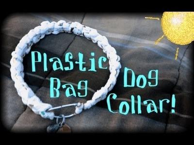 Plastic bag dog collar (quick tutorial)