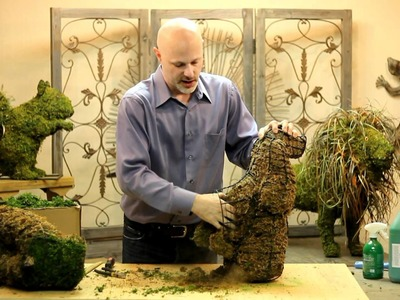 How To Freshen Up Your Tired Topiary