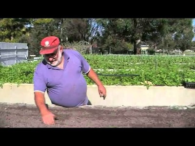 How to Make a Living Farming a Quarter Acre