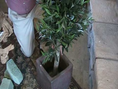 How to Pot an Artificial Tree
