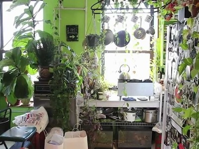 How to Green Your Home (Part 1): Build an Indoor Vertical Garden