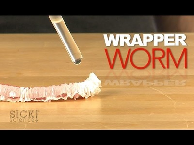Wrapper Worm - Sick Science! #175