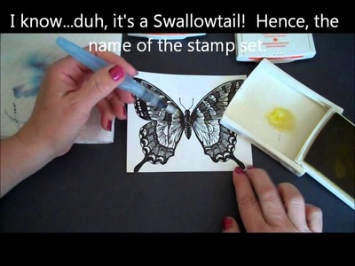Stampin' Up! Aqua Painter Technique with the Swallowtail!