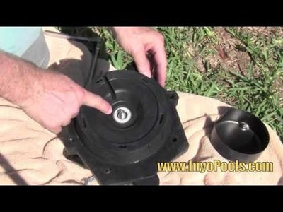InyoPools.com - How to Replace a Pool Pump Motor