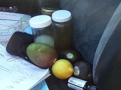 How to eat & live healthy out of your car while on road trips!