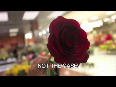 ShopRite Presents: How to keep your roses fresh and beautiful